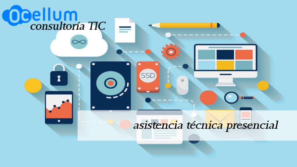 asistencia tecnica presencial Ocellum consultoria TIC